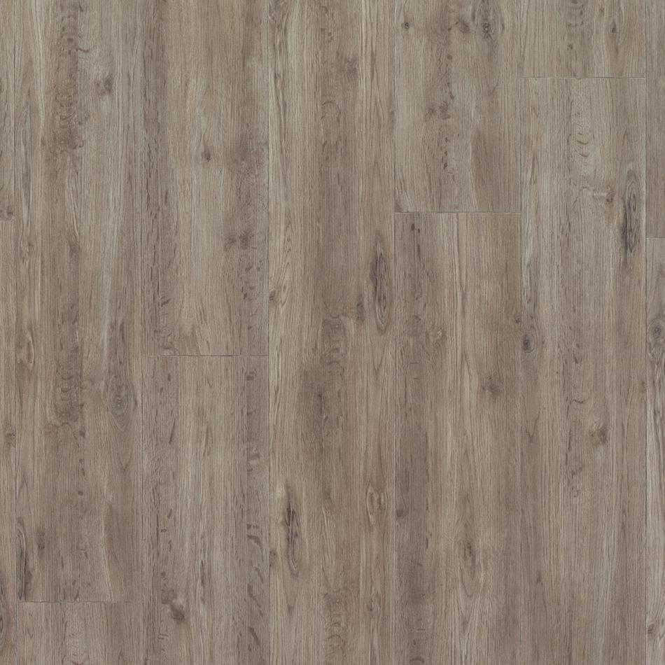 Empire - Elegant Rainforest Oak