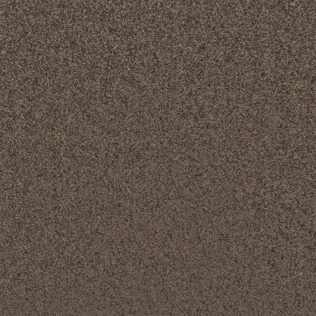 Dark Brown Hessian Back Carpet    Echo Taupe 932